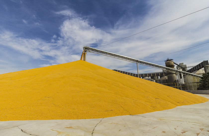 mound of biofuel at production plant.