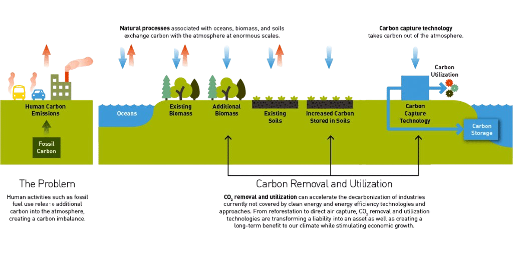 how the carbon cycle works, with natural processes and carbon capture technology.